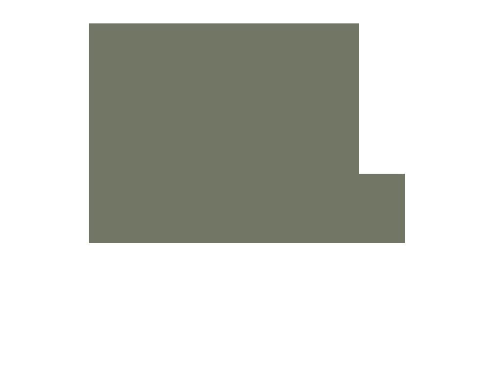 Aloe Elixir Hydrating Face Serum - Juniper & Pine Organic